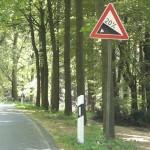 20 % Steigung im Teutoburger Wald